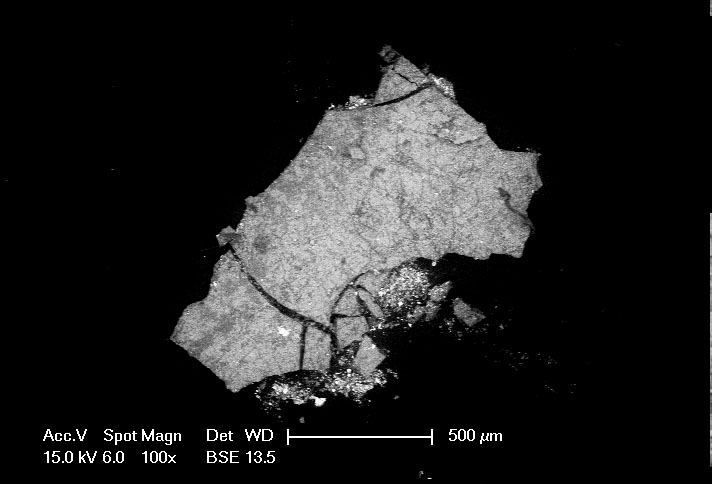 SEM image of small paint sample