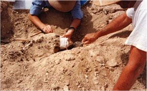 Excavation of artifacts