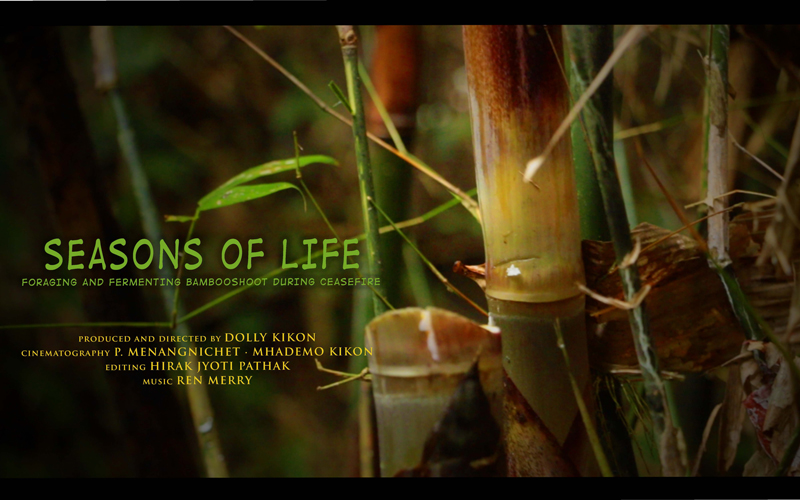 A poster for the Seasons of Life documentary reading: Seasons of life, foraging and fermenting bambooshoot during ceasefire