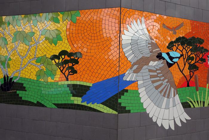 Denisbin (photographer). 'Superb Australian blue Fairy Wren. Mosaic on a besser block wall, Coonalpyn South Australia' 2018