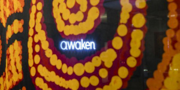 Closeup of Awaken artwork detail.