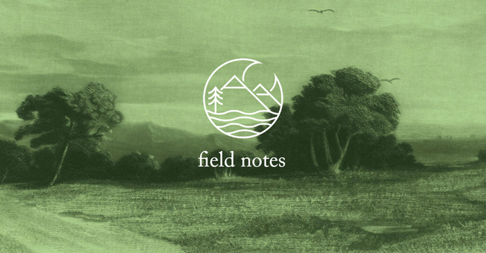 Field Notes: Meditations on Observing Nature Through Art