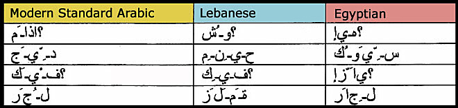 Arabic Dialects and Facilitating Learning of Modern Standard Arabic