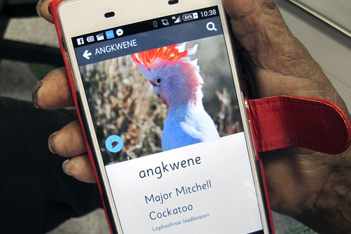 A project by RUIL, the Getting in Touch bird apps enable people to listen to recordings of language names for birds alongside photographs of birds and the sounds of their calls