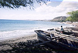 East Timorese landscape