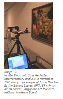 In situ Electronic Speckle Pattern Interferometry analysis in November 2005